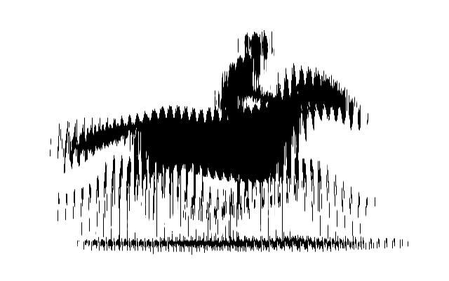 Zoomed screenshot of bird