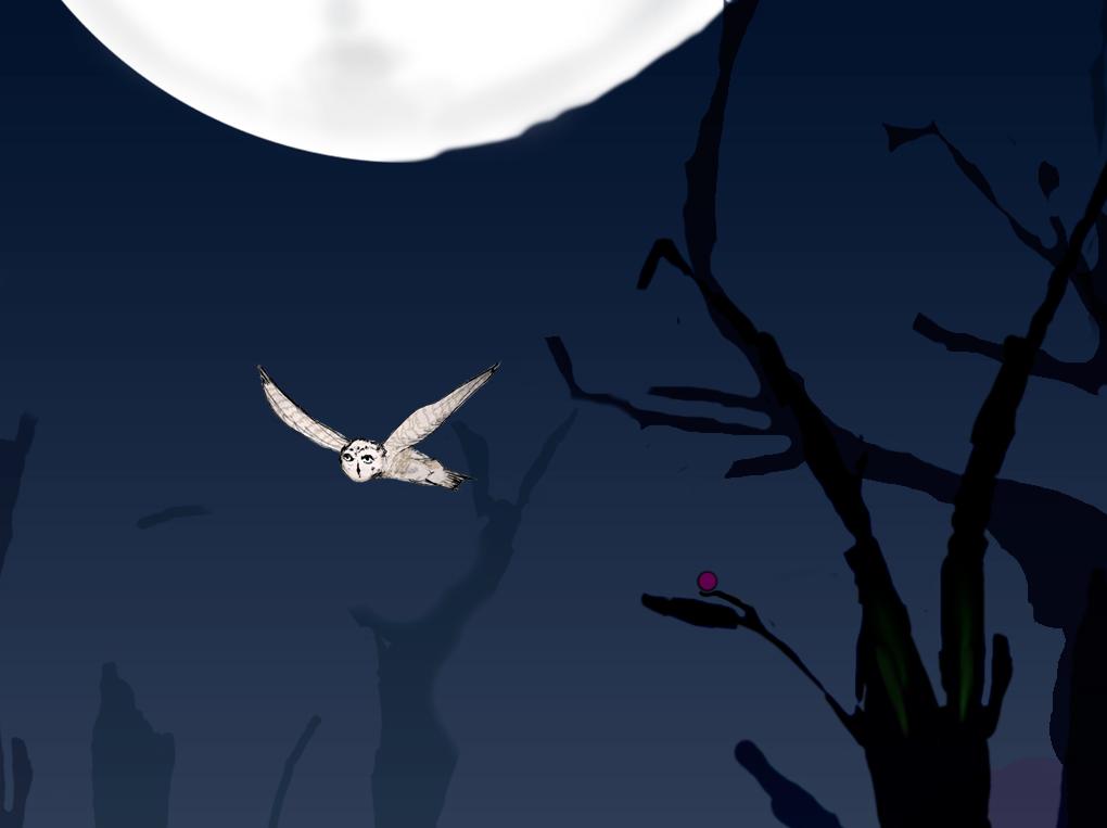 Screenshot 1 of Magic Owl