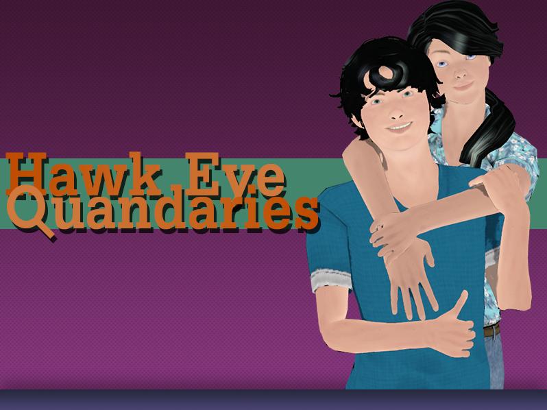 Screenshot of Hawk Eye Quandaries