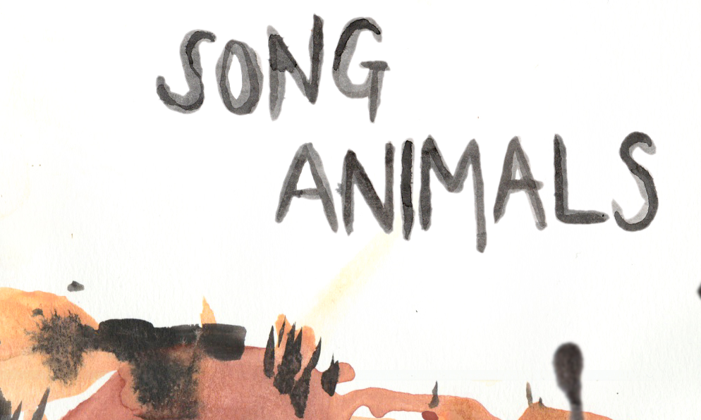 Zoomed screenshot of Song Animals
