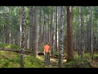 Screenshot of Lost In The Woods