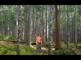 Screenshot 1 of Lost In The Woods